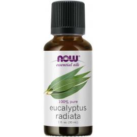 Essential Oils Eucalyptus Radiata 30 ml